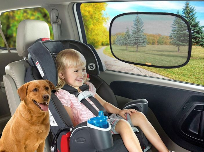 5 consigli per tutelare bimbi e animali a bordo dell'auto - Foto 1 di 7