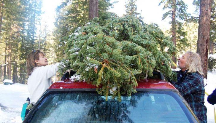 Come trasportare l'albero di Natale in auto senza incorrere in sanzioni - Foto 2 di 9