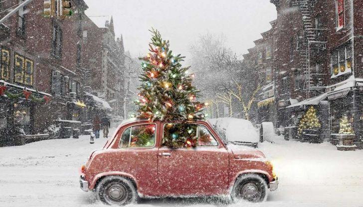 Come trasportare l'albero di Natale in auto senza incorrere in sanzioni - Foto 3 di 9