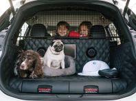 Nissan X-Trail 4Dogs strizza l'occhio al miglior amico dell'uomo