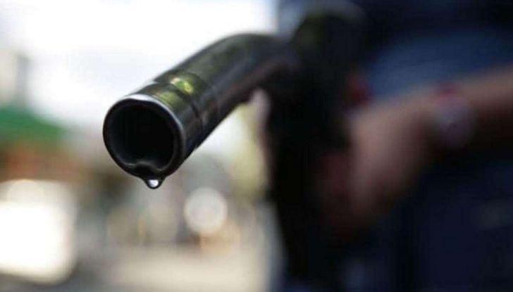 Diesel, aumentano le vendite delle Volkswagen a gasolio in Germania - Foto 2 di 5