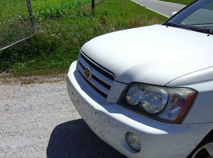Come rimuovere i moscerini dalla carrozzeria dell'auto - Foto 5 di 8
