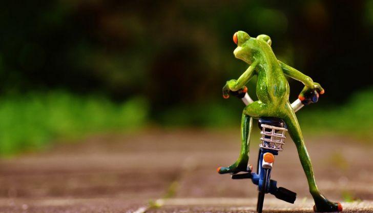 Infrazione in bici, non si rischiano punti della patente - Foto 4 di 7