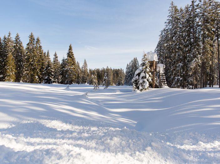 SEAT e la trazione integrale 4Drive, prova e recensione sulla neve - Foto 49 di 62