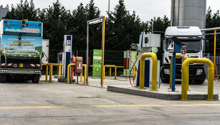 Volkswagen verso il Biometano con Up!, Polo e Golf: Rivoluzione Ecologista - Foto 12 di 44