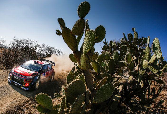 WRC Messico 2018: il team Citroën punta in alto - Foto 3 di 4