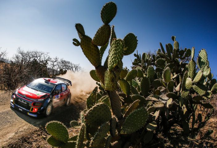 WRC Messico 2018: il team Citroën punta in alto - Foto 3 di 4