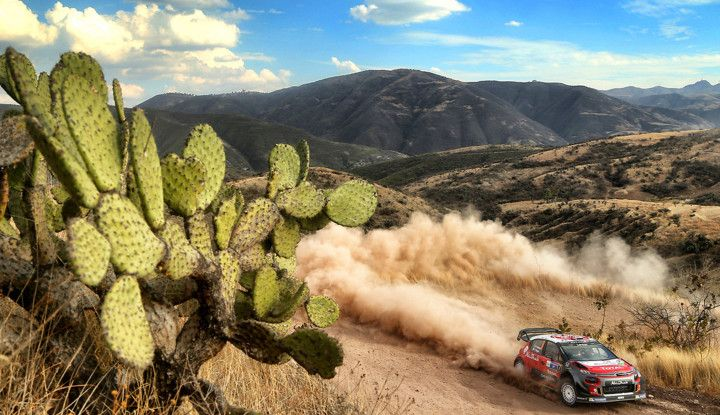 WRC Messico 2018: il team Citroën punta in alto - Foto 1 di 4