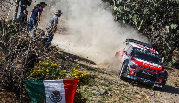 WRC Messico 2018- shakedown: il ritmo giusto per le C3 WRC - Foto 2 di 4