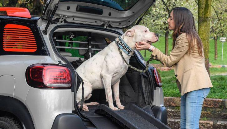 """Citroën lancia il kit """"Pet à Porter"""" per la sicurezza dei cani in auto - Foto 1 di 25"""