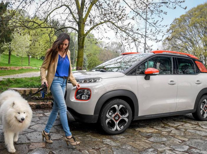"""Citroën lancia il kit """"Pet à Porter"""" per la sicurezza dei cani in auto - Foto 10 di 25"""