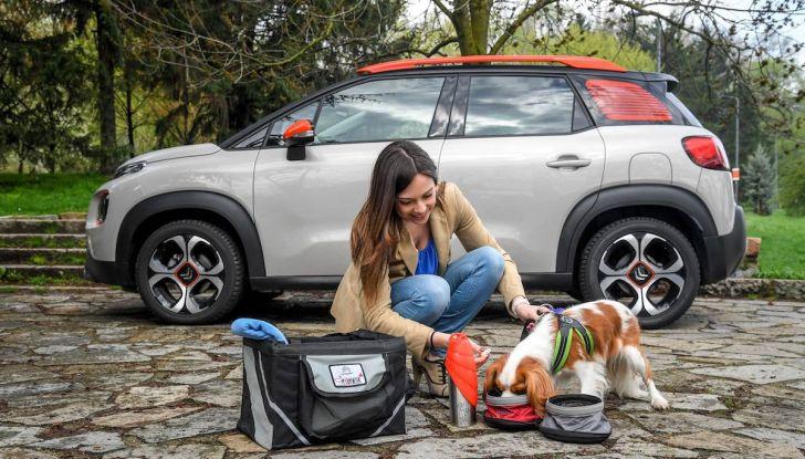 """Citroën lancia il kit """"Pet à Porter"""" per la sicurezza dei cani in auto - Foto 12 di 25"""