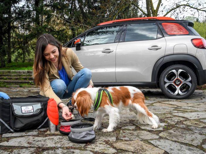 """Citroën lancia il kit """"Pet à Porter"""" per la sicurezza dei cani in auto - Foto 13 di 25"""