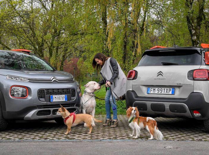 """Citroën lancia il kit """"Pet à Porter"""" per la sicurezza dei cani in auto - Foto 16 di 25"""