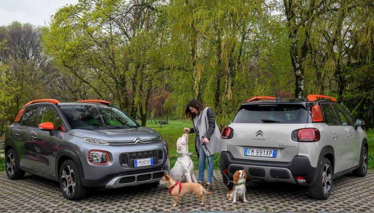 """Citroën lancia il kit """"Pet à Porter"""" per la sicurezza dei cani in auto - Foto 17 di 25"""