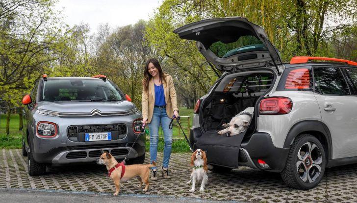 """Citroën lancia il kit """"Pet à Porter"""" per la sicurezza dei cani in auto - Foto 18 di 25"""