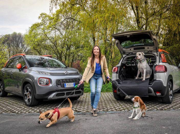 """Citroën lancia il kit """"Pet à Porter"""" per la sicurezza dei cani in auto - Foto 19 di 25"""