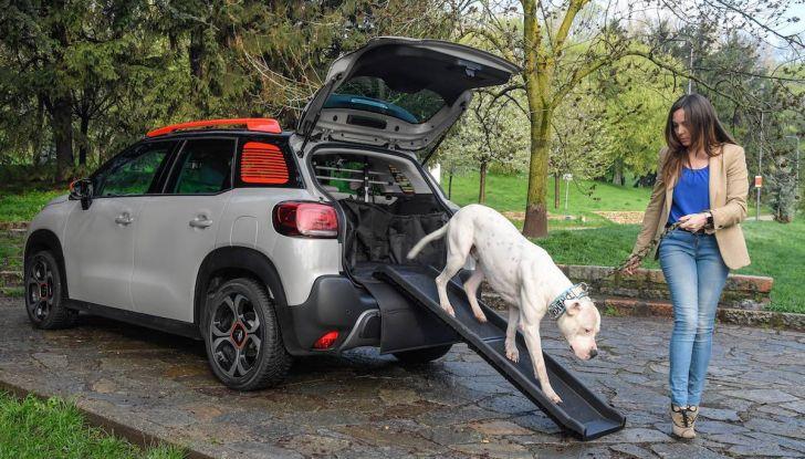 """Citroën lancia il kit """"Pet à Porter"""" per la sicurezza dei cani in auto - Foto 2 di 25"""