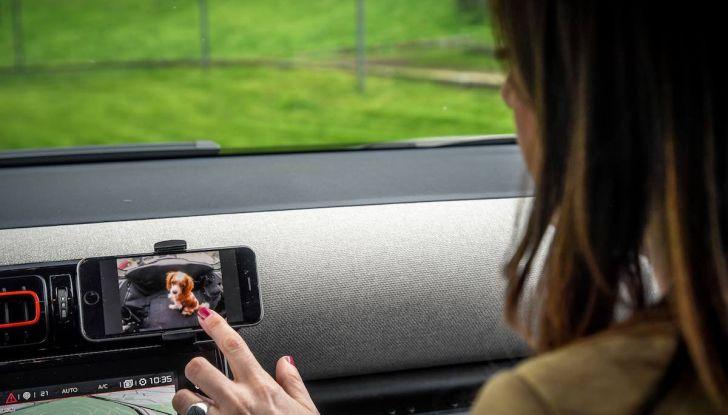 """Citroën lancia il kit """"Pet à Porter"""" per la sicurezza dei cani in auto - Foto 25 di 25"""