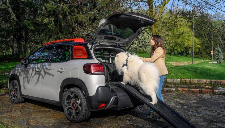 """Citroën lancia il kit """"Pet à Porter"""" per la sicurezza dei cani in auto - Foto 5 di 25"""