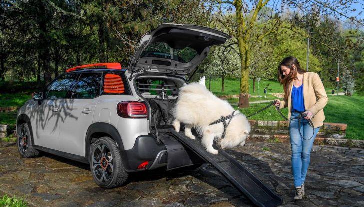 """Citroën lancia il kit """"Pet à Porter"""" per la sicurezza dei cani in auto - Foto 6 di 25"""