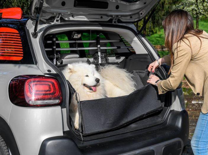 """Citroën lancia il kit """"Pet à Porter"""" per la sicurezza dei cani in auto - Foto 7 di 25"""