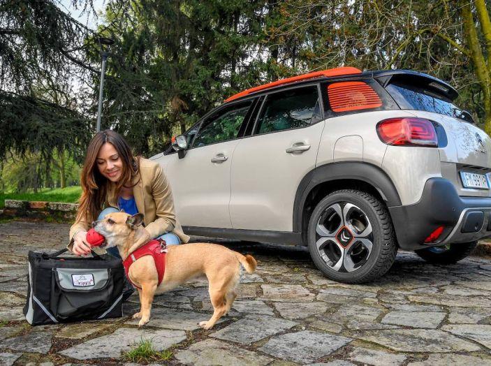 """Citroën lancia il kit """"Pet à Porter"""" per la sicurezza dei cani in auto - Foto 9 di 25"""