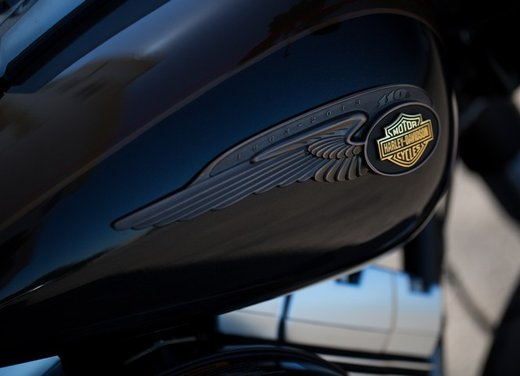 Harley-Davidson festeggia i suoi 110 anni alla European Bike Week 2012 - Foto 8 di 36