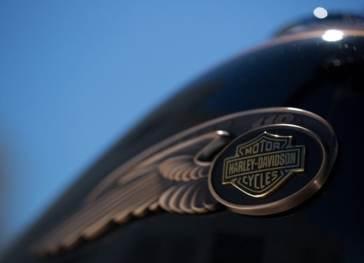 Harley-Davidson festeggia i suoi 110 anni alla European Bike Week 2012 - Foto 10 di 36