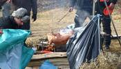 Elefantentreffen 2009 – Le immagini - Foto 29 di 43