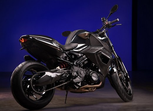 BMW F 800 R by Vilner Custom Bike Predator - Foto 3 di 21