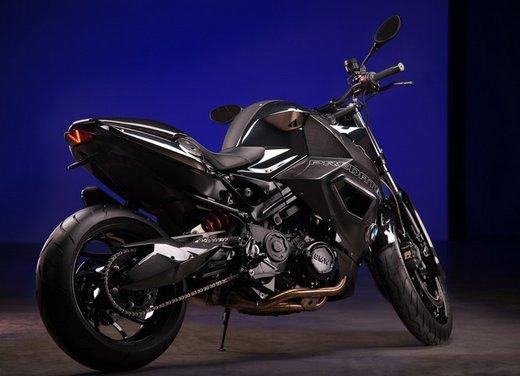BMW F 800 R by Vilner Custom Bike Predator - Foto 3 di 21