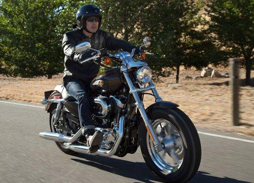 Harley-Davidson festeggia i suoi 110 anni alla European Bike Week 2012 - Foto 13 di 36