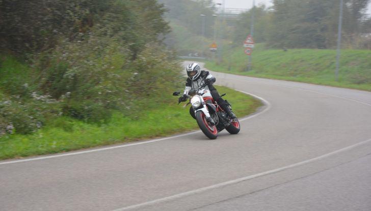 Ducati Monster 797: happy birthday Monster - Foto 18 di 53