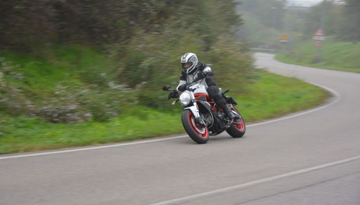 Ducati Monster 797: happy birthday Monster - Foto 19 di 53