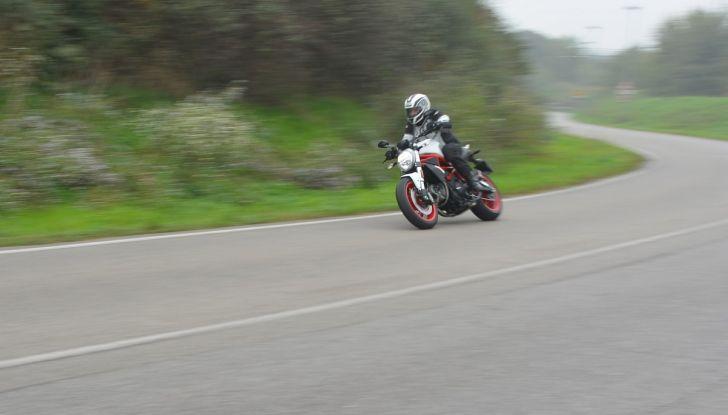 Ducati Monster 797: happy birthday Monster - Foto 22 di 53