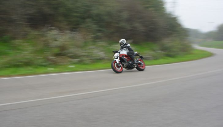 Ducati Monster 797: happy birthday Monster - Foto 23 di 53