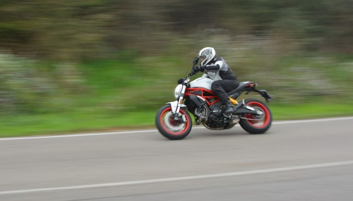 Ducati Monster 797: happy birthday Monster - Foto 24 di 53