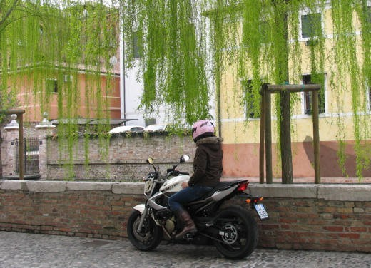 Yamaha XJ6 vs Suzuki Gladius - Foto 14 di 18