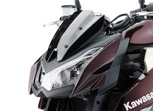 Kawasaki Z1000 - Foto 11 di 19