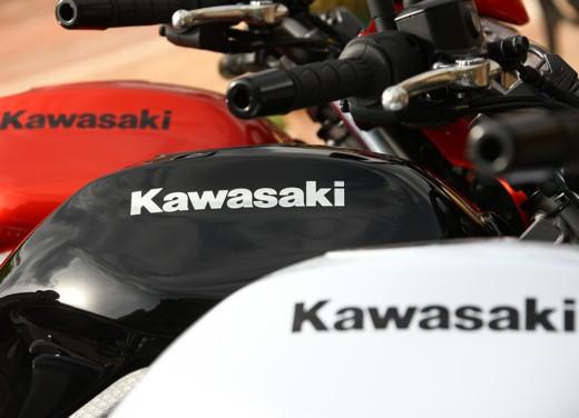 Kawasaki Er-6n 2009 - Foto 17 di 25