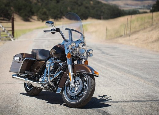 Harley-Davidson festeggia i suoi 110 anni alla European Bike Week 2012 - Foto 27 di 36