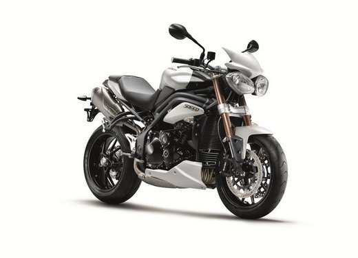 Triumph Extra: Tiger 800, Speed Triple e altri modelli con accessori in offerta - Foto 1 di 14