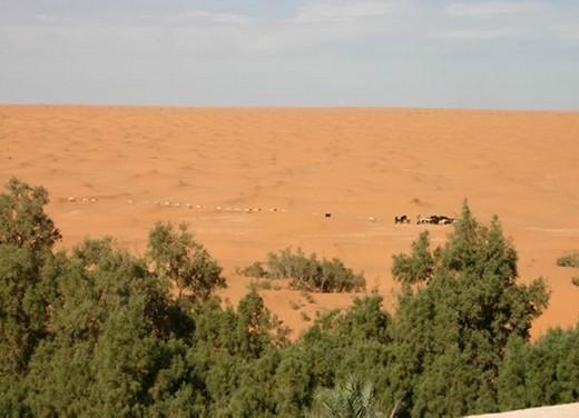 Stelvio Ride in Tunisia - Foto 3 di 10