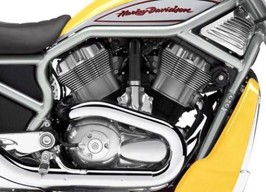 Harley Davidson Street Rod - Foto 9 di 10