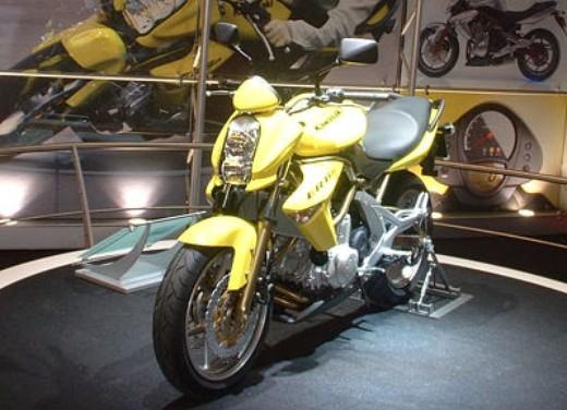 Kawasaki al Salone di Parigi 2005 - Foto 6 di 20