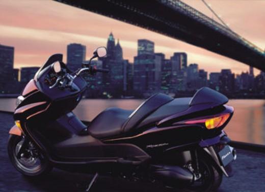 Honda Forza 250 - Foto 1 di 14