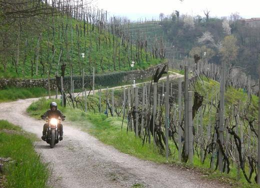 Harley Davidson Night Rod Special – Long Test Ride - Foto 29 di 50