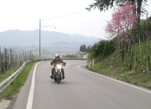 Harley Davidson Night Rod Special – Long Test Ride - Foto 30 di 50