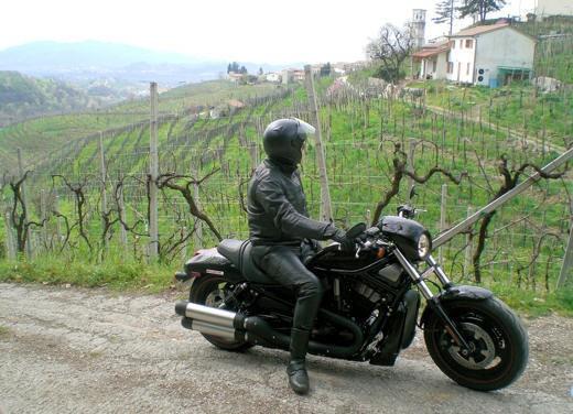 Harley Davidson Night Rod Special – Long Test Ride - Foto 31 di 50
